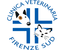 http://www.clinicaveterinariafirenzesud.it